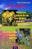 Vindecarea durerii de cap cu ajutorul plantelor - Sa dormim bine cu ajutorul plantelor