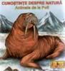 Cunostinte despre natura - animale de la Poli (pliant cartonat)