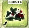 Fructe (pliant cartonat)